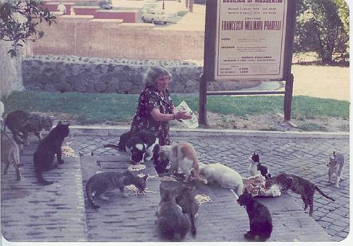 Roman-cat-lady